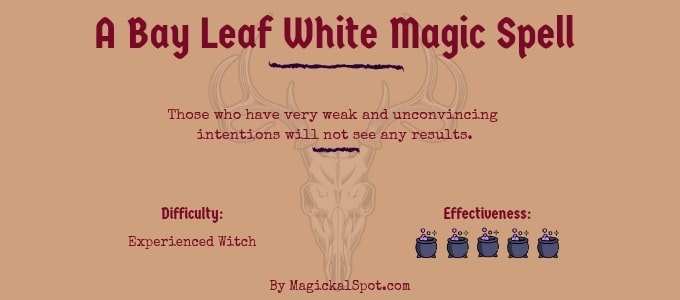 A Bay Leaf White Magic Spell
