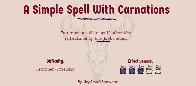 A Simple Spell With Carnations