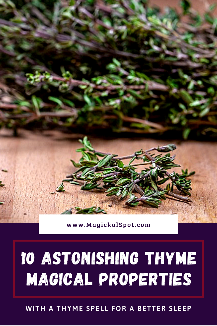 10 Astonishing Thyme Magical Properties by MagickalSpot