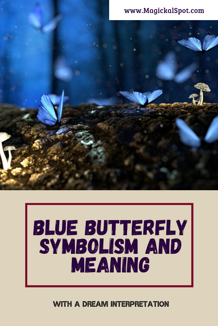 Blue Butterfly Symbolism and Meaning by MagickalSpot