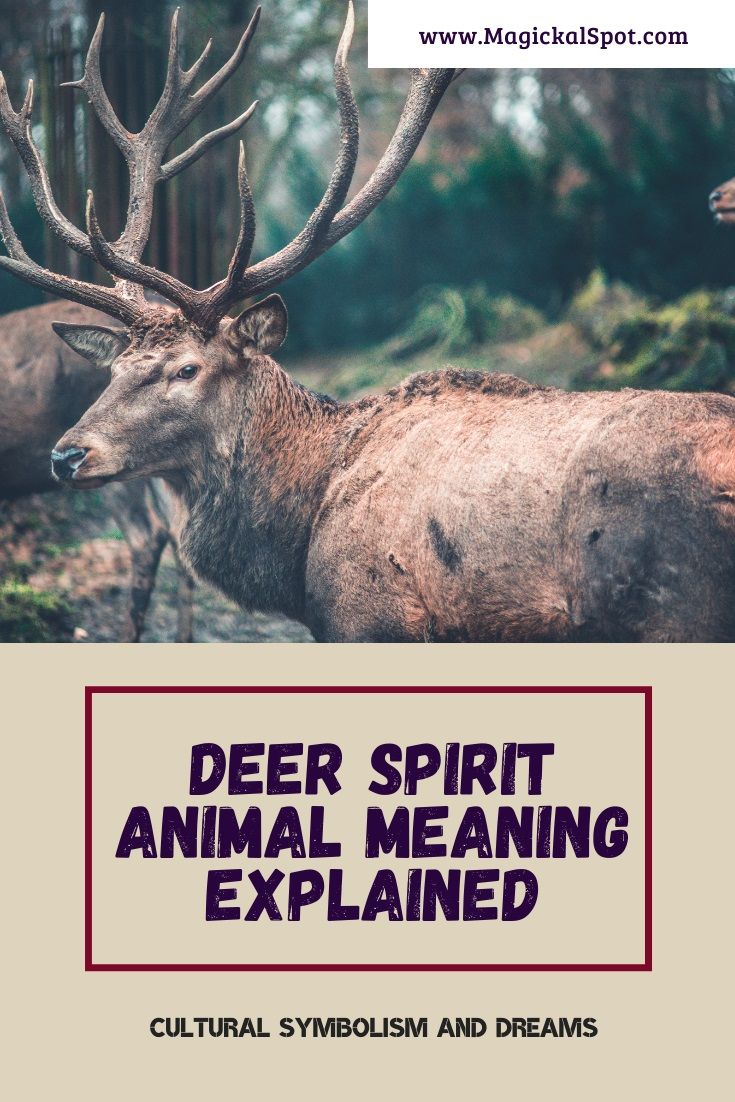 Deer Spirit Animal Meaning by MagickalSpot