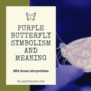 Purple Butterfly Symbolism and Meaning featured
