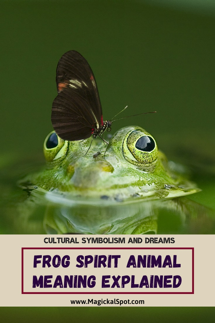 Frog Spiritual Meaning Explained by MagickalSpot
