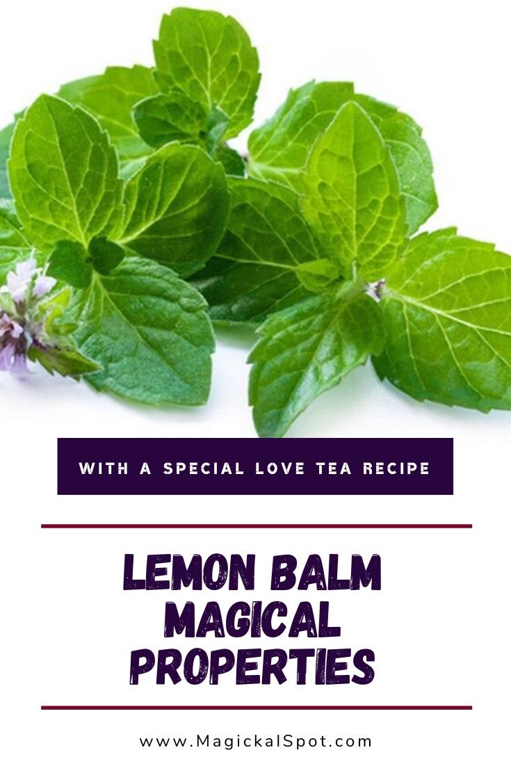 Lemon Balm Magical Properties by MagickalSpot