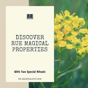 Rue Magical Properties featured