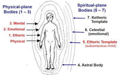 7 subtle bodies