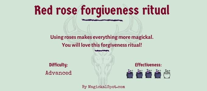 Red rose forgiveness ritual