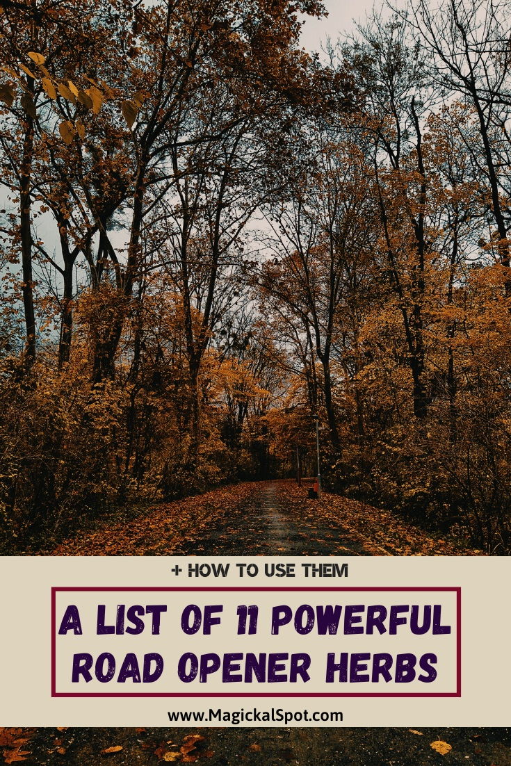 List of Powerful Road Opener Herbs by MagickalSpot