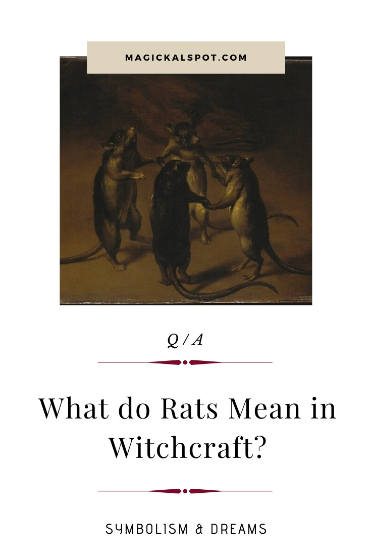 What do Rats Mean in Witchcraft by MagickalSpot