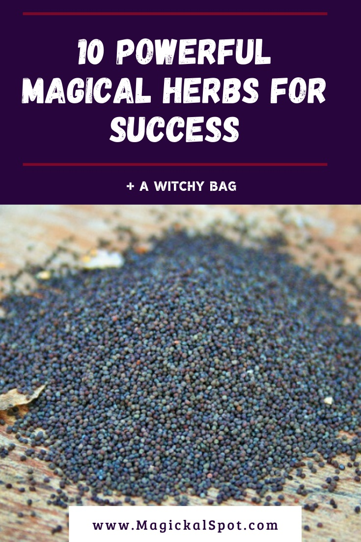10 Powerful Magical Herbs for Success by MagickalSpot