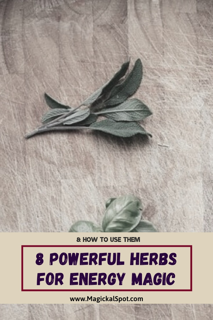8 Powerful Herbs for Energy Magic by MagickalSpot