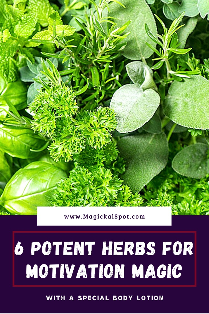 Potent Herbs for Motivation Magic by MagickalSpot