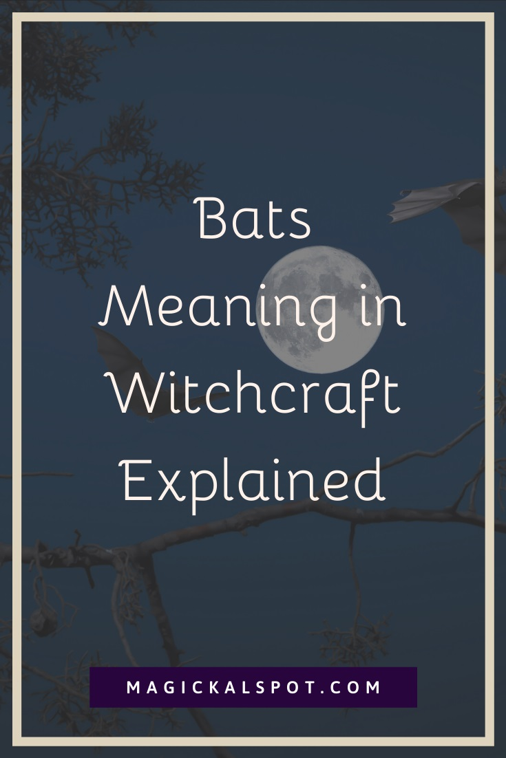 Bats Meaning in Witchcraft Explained by Magickal Spot