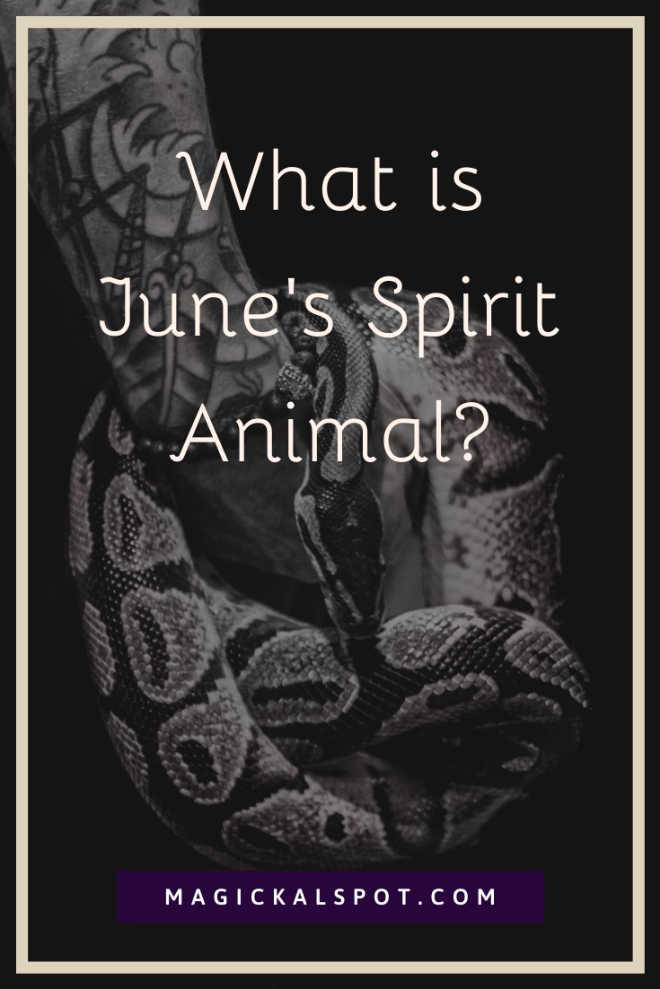 What is June Spirit Animal by MagickalSpot