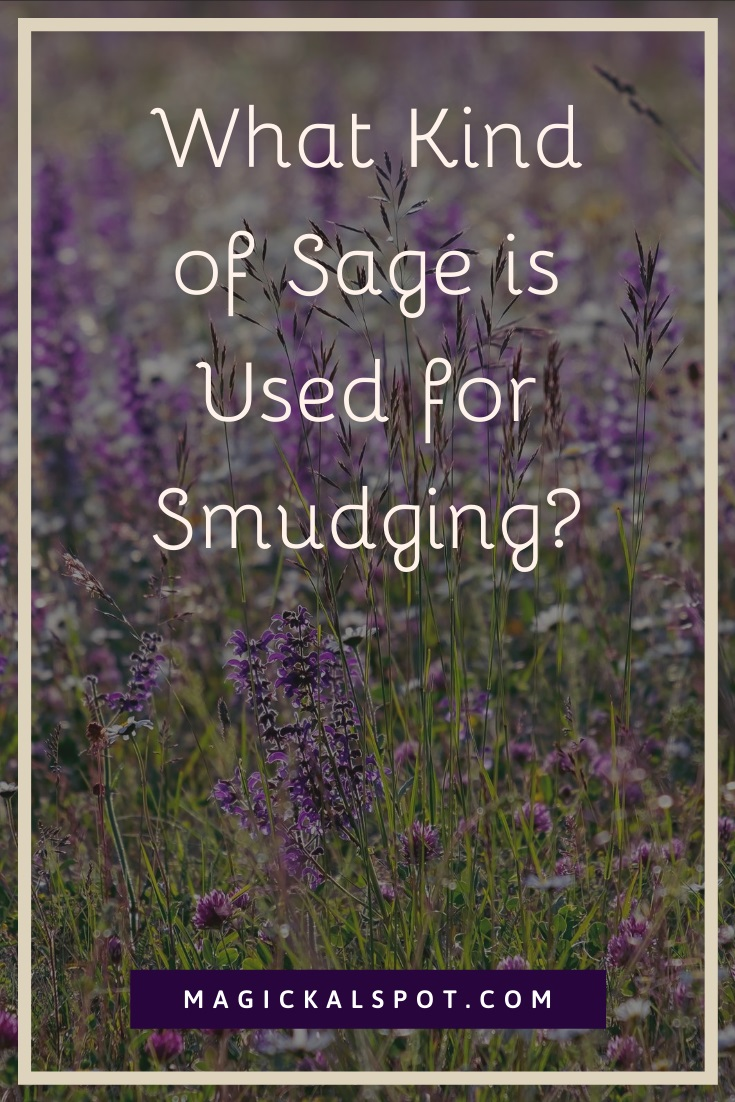 What Kind of Sage is Used for Smudging by MagickalSpot