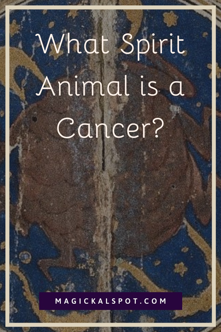 What Spirit Animal is a Cancer by MagickalSpot
