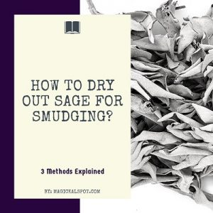 How to Dry Out Sage for Smudging featured