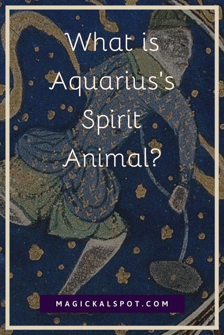 What is Aquarius Spirit Animal by MagickalSpot