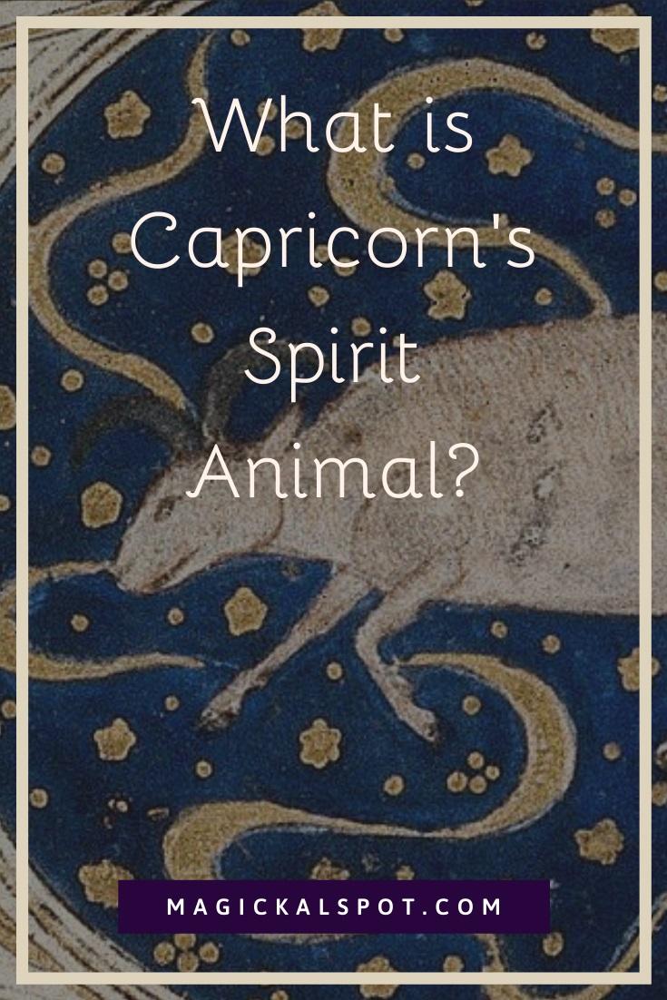 What is Capricorn Spirit Animal by MagickalSpot