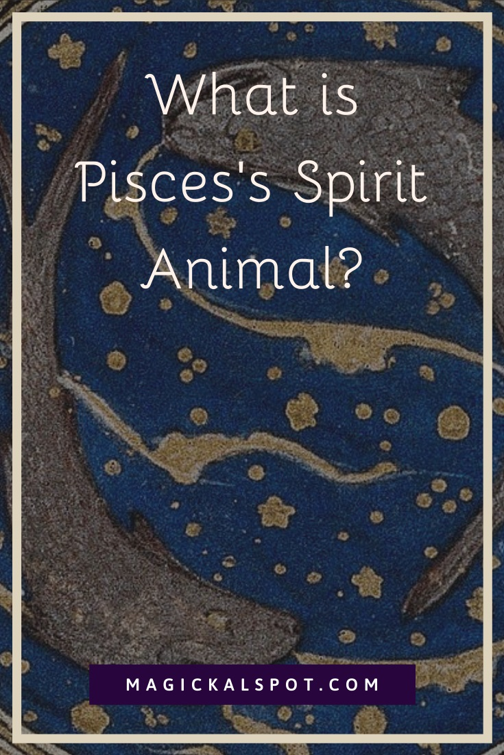 What is Pisces Spirit Animal by MagickalSpot