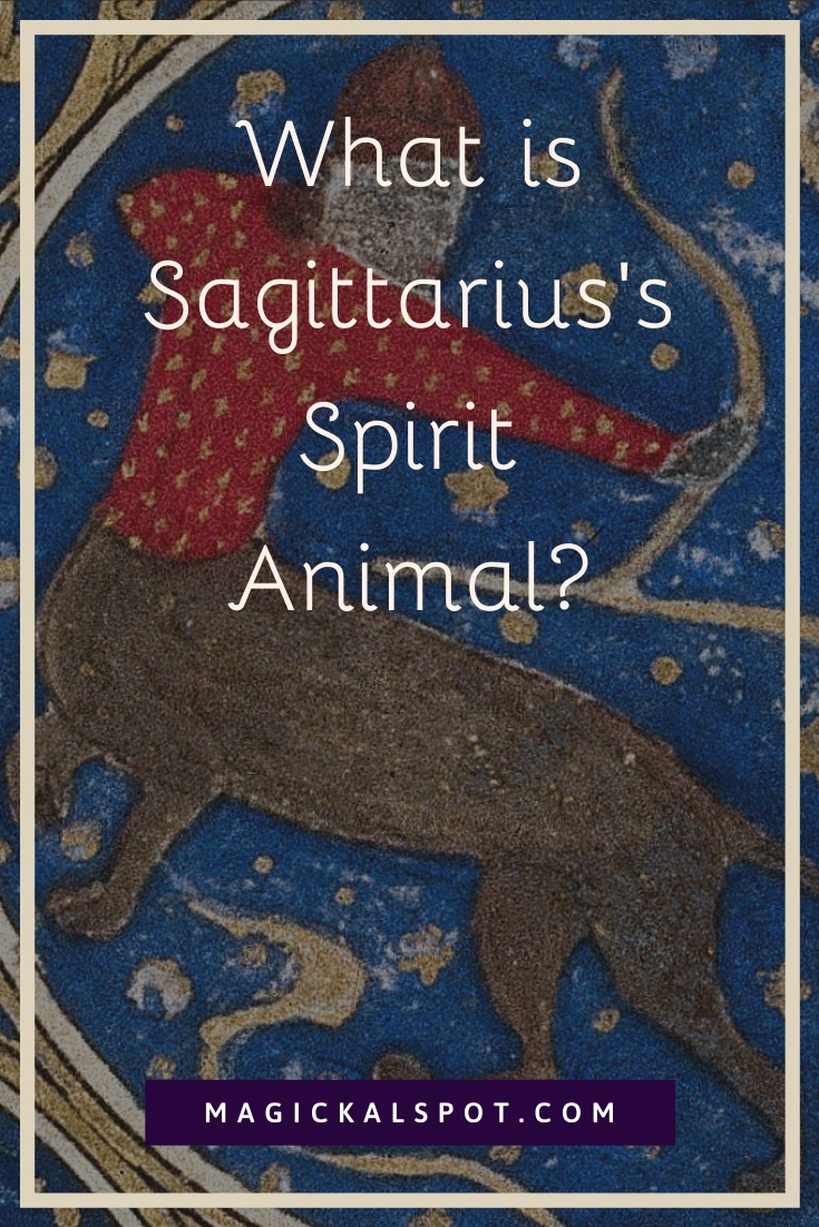 What is Sagittarius Spirit Animal by MagickalSpot
