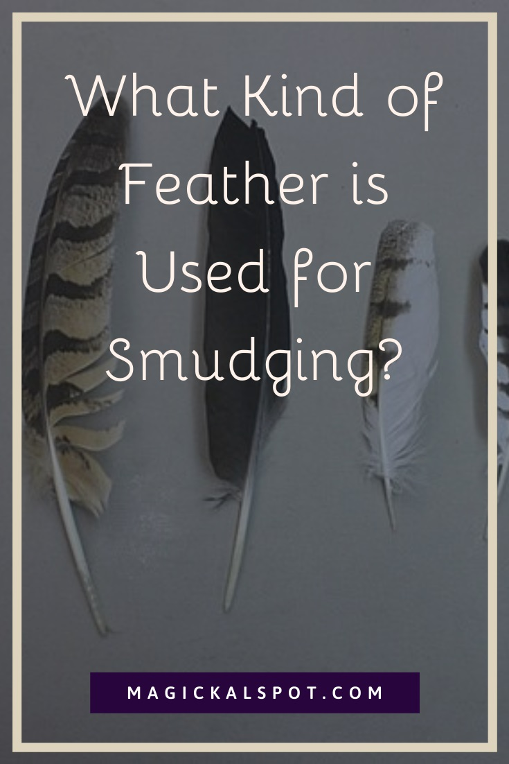 What Kind of Feather is Used for Smudging by MagickalSpot