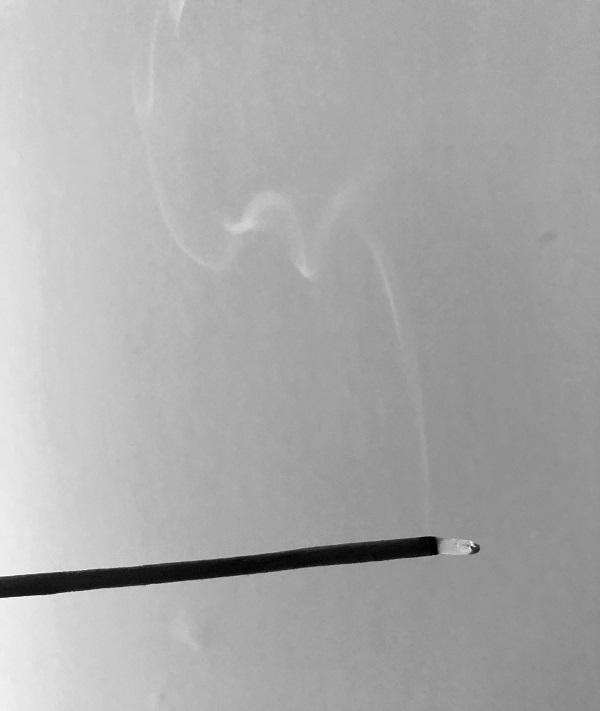 burned down incense stick by Tina Caro Magickal Spot