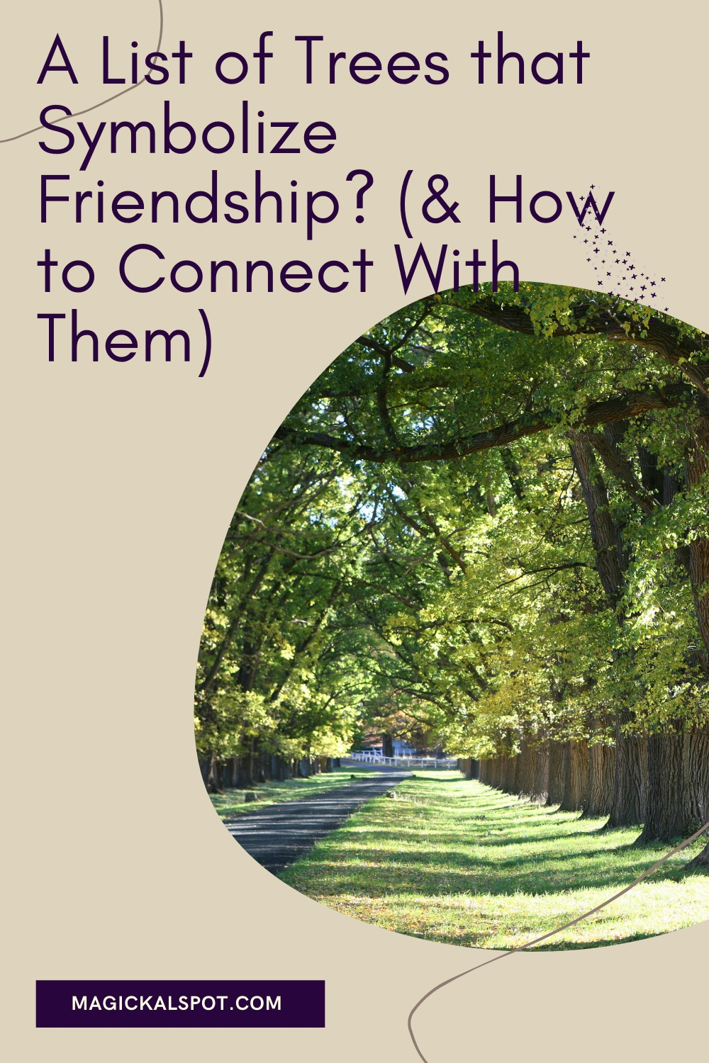 A List of Trees that Symbolize Friendship by Magickal Spot